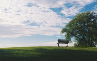 3 gode grunde til at bruge en bedemand ved arrangering af begravelsen